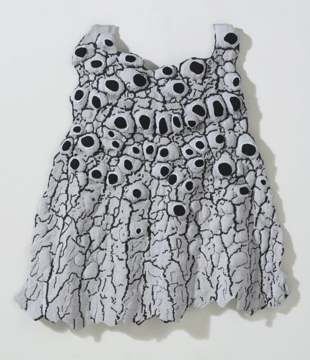 Bowers_Lichen Party Frock