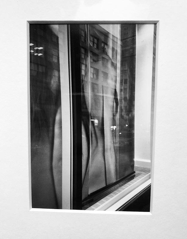 Window Reflects